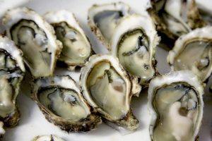 Meilleurs mois pour manger des huîtres