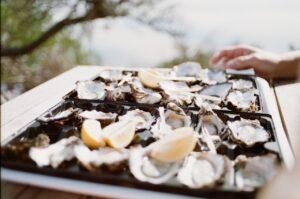 Quels vins choisir avec les huîtres ?